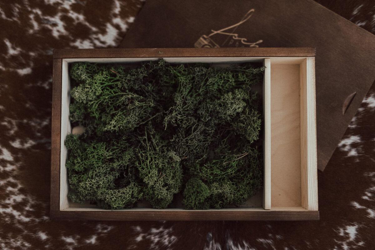 moos fotograf ausfüllen holzbox